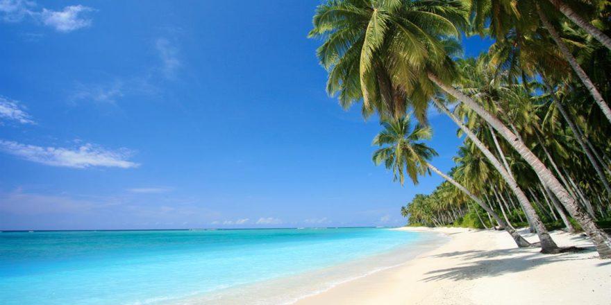 картинки на рабочий стол море пляж пальмы № 258654 загрузить
